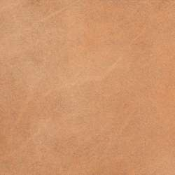 Клинкерная напольная плитка Ghoa (310х310х10)